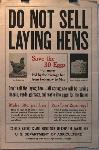 How to sell hens